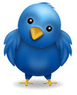 confused twitter bird